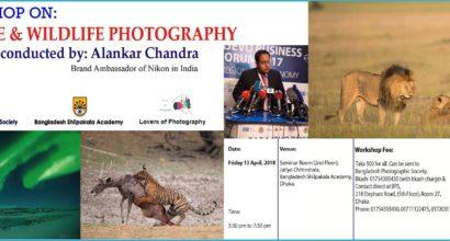 Workshop On Nature & Wildlife Photography