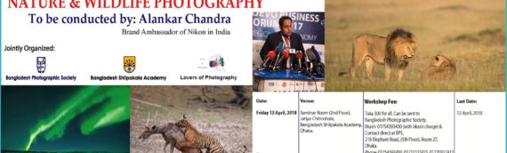 Workshop On Nature & Wildlife Photography